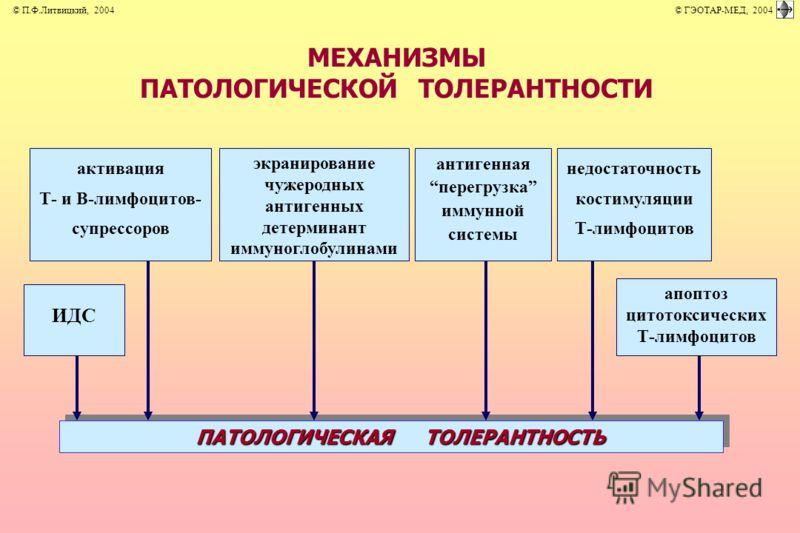 МЕХАНИЗМЫ ПАТОЛОГИЧЕСКОЙ ТОЛЕРАНТНОСТИ ИДС активация Т- и В-лимфоцитов- супрессоров экранирование чужеродных антигенных детерминант иммуноглобулинами антигенная перегрузка иммунной системы недостаточность костимуляции Т-лимфоцитов апоптоз цитотоксиче