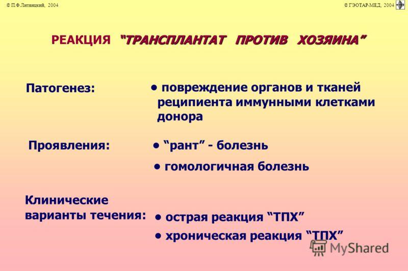 Трансплантат фото