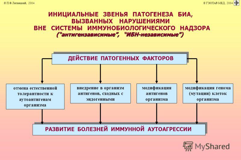 ИНИЦИАЛЬНЫЕ ЗВЕНЬЯ ПАТОГЕНЕЗА БИА, ВЫЗВАННЫХ НАРУШЕНИЯМИ ВНЕ СИСТЕМЫ ИММУНОБИОЛОГИЧЕСКОГО НАДЗОРА (антигензависимые, ИБН-независимые) ДЕЙСТВИЕ ПАТОГЕННЫХ ФАКТОРОВ РАЗВИТИЕ БОЛЕЗНЕЙ ИММУННОЙ АУТОАГРЕССИИ внедрение в организм антигенов, сходных с эндог