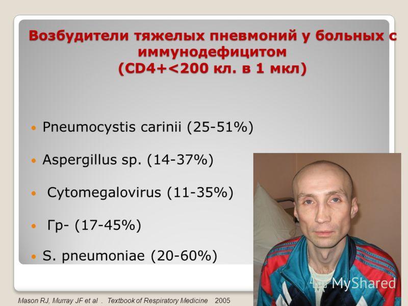 Возбудители тяжелых пневмоний у больных с иммунодефицитом (CD4+