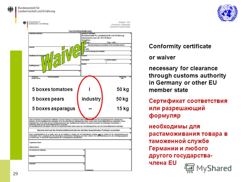 29 5 boxes tomatoes I 50 kg 5 boxes pears industry 50 kg 5 boxes asparagus -- 15 kg Conformity certificate or waiver necessary for clearance through customs authority in Germany or other EU member state Сертификат соответствия или разрешающий формуля