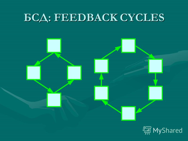 БСД: FEEDBACK CYCLES