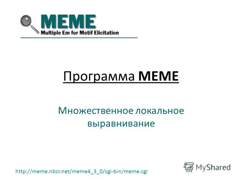 Программа MEME Множественное локальное выравнивание http://meme.nbcr.net/meme4_3_0/cgi-bin/meme.cgi