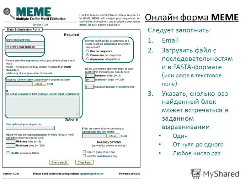 Онлайн форма MEME Следует заполнить: 1.Email 2.Загрузить файл с последовательностям и в FASTA-формате ( или paste в текстовое поле ) 3.Указать, сколько раз найденный блок может встречаться в заданном выравнивании Один От нуля до одного Любое число ра