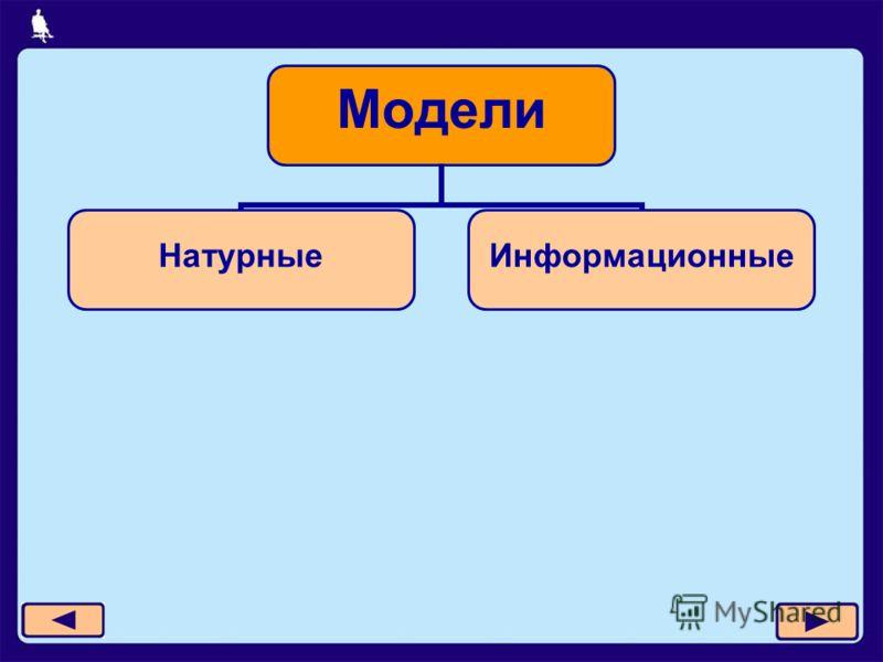 Модели НатурныеИнформационные