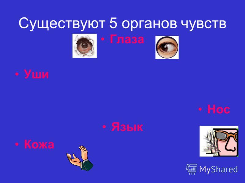 Существуют 5 органов чувств Глаза Уши Нос Язык Кожа