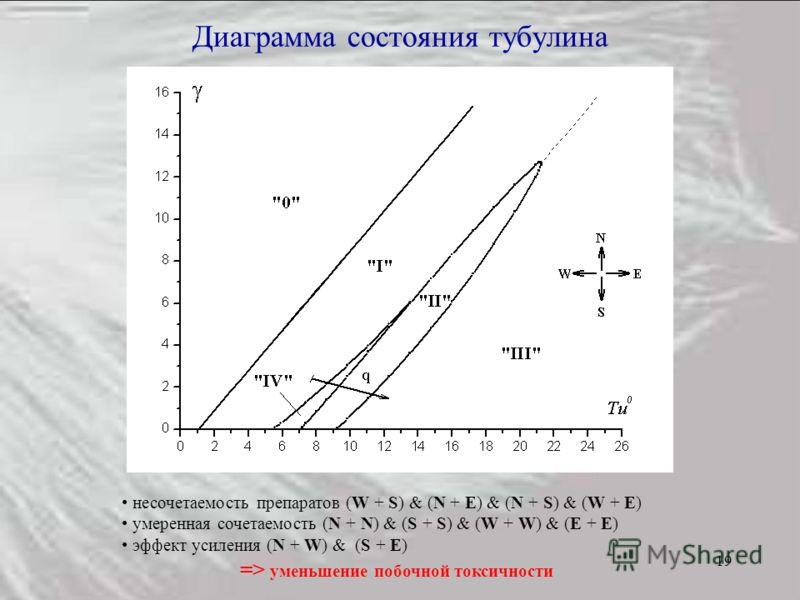 19 Диаграмма состояния тубулина несочетаемость препаратов (W + S) & (N + E) & (N + S) & (W + E) умеренная сочетаемость (N + N) & (S + S) & (W + W) & (E + E) эффект усиления (N + W) & (S + E) => уменьшение побочной токсичности