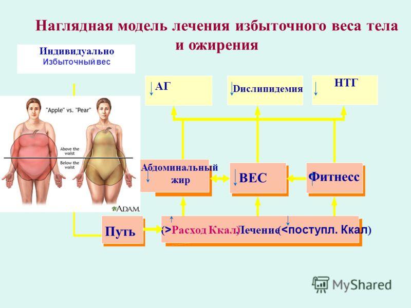 Наглядная модель лечения избыточного веса тела и ожирения Индивидуально Избыточный вес Лечение ( > Расход Ккал)(
