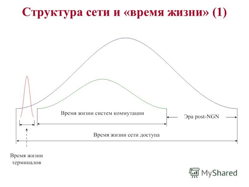 Структура сети и «время жизни» (1)