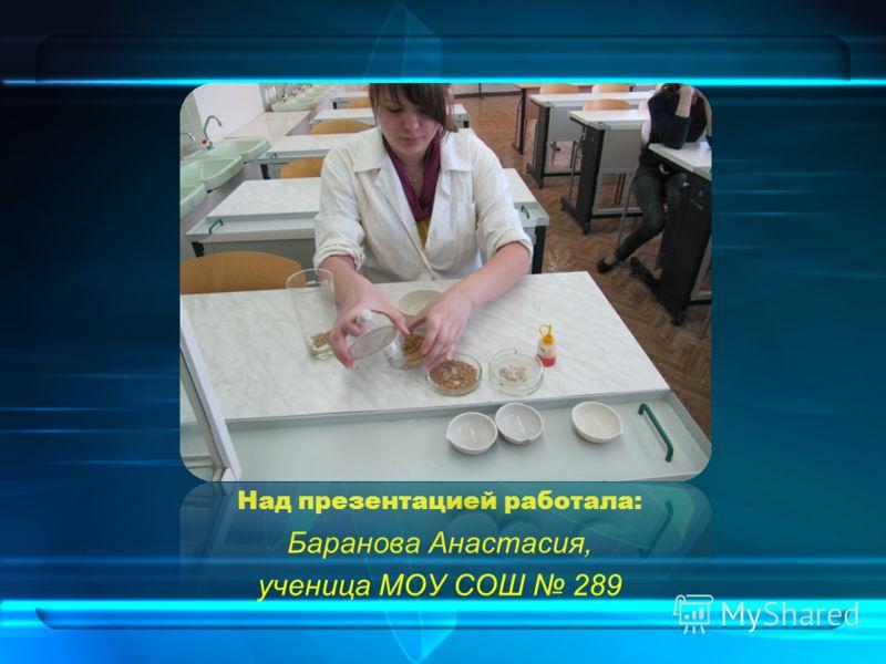 Над презентацией работала: Баранова Анастасия, ученица МОУ СОШ 289