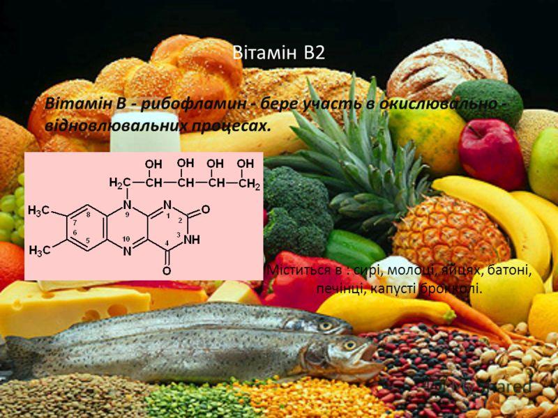 Вітамін В2 Вітамін В - рибофламин - бере участь в окислювально - відновлювальних процесах. Міститься в : сирі, молоці, яйцях, батоні, печінці, капусті брокколі.