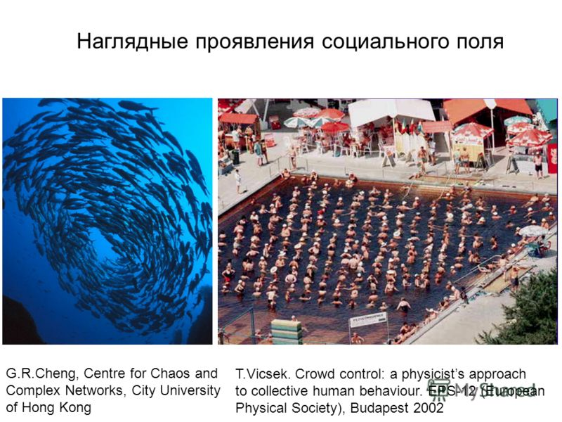 T.Vicsek. Crowd control: a physicists approach to collective human behaviour. EPS-12 (European Physical Society), Budapest 2002 G.R.Cheng, Centre for Chaos and Complex Networks, City University of Hong Kong Наглядные проявления социального поля