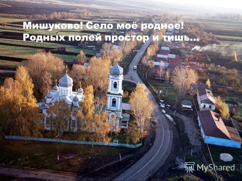 Мишуково! Село моё родное! Родных полей простор и тишь…