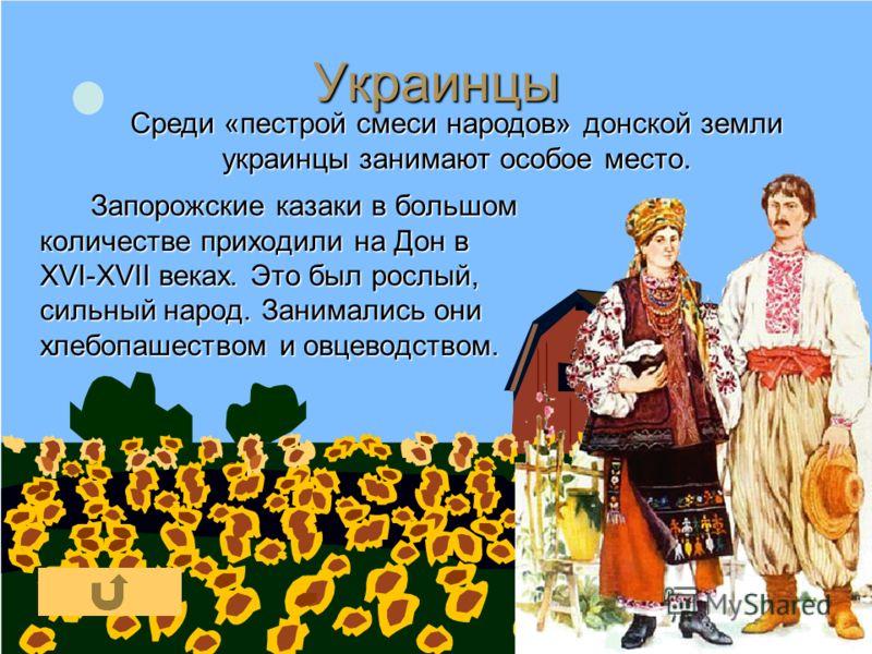Украинцы Запорожские казаки в большом количестве приходили на Дон в XVI-XVII веках. Это был рослый, сильный народ. Занимались они хлебопашеством и овцеводством. Среди «пестрой смеси народов» донской земли украинцы занимают особое место.