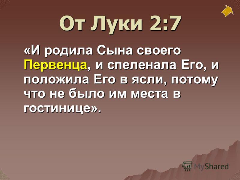 «И родила Сына своего Первенца, и спеленала Его, и положила Его в ясли, потому что не было им места в гостинице». От Луки 2:7