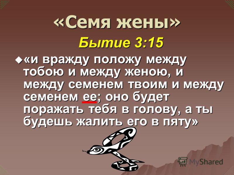 Бытие 3:15 «и вражду положу между тобою и между женою, и между семенем твоим и между семенем ее; оно будет поражать тебя в голову, а ты будешь жалить его в пяту» «и вражду положу между тобою и между женою, и между семенем твоим и между семенем ее; он