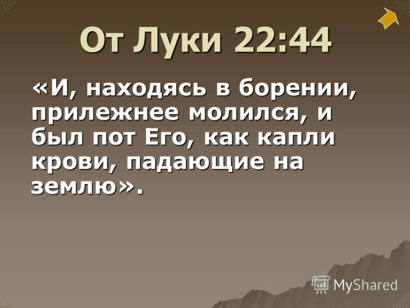 «И, находясь в борении, прилежнее молился, и был пот Его, как капли крови, падающие на землю». От Луки 22:44