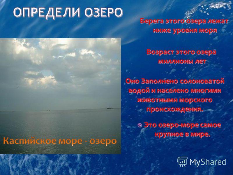 Это озеро-море самое крупное в мире. Это озеро-море самое крупное в мире. Возраст этого озера миллионы лет миллионы лет Берега этого озера лежат ниже уровня моря Оно Заполнено солоноватой водой и населено многими животными морского происхождения.