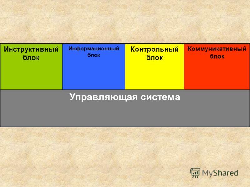 Инструктивный блок Информационный блок Контрольный блок Коммуникативный блок Управляющая система