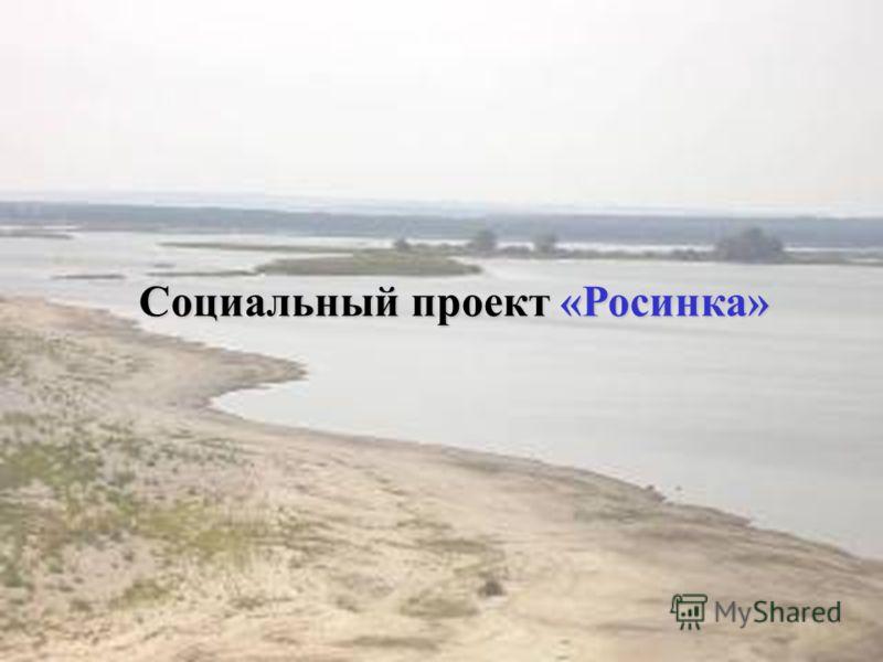 Социальный проект «Росинка»