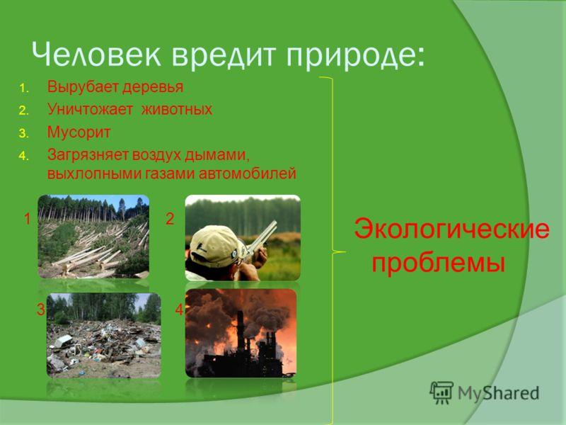 Человек вредит природе: 1. Вырубает деревья 2. Уничтожает животных 3. Мусорит 4. Загрязняет воздух дымами, выхлопными газами автомобилей 1 2 3 4 Экологические проблемы