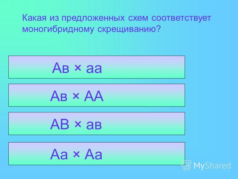 Какая из предложенных схем соответствует моногибридному скрещиванию? Аа × Аа АВ × ав Ав × АА Ав × аа