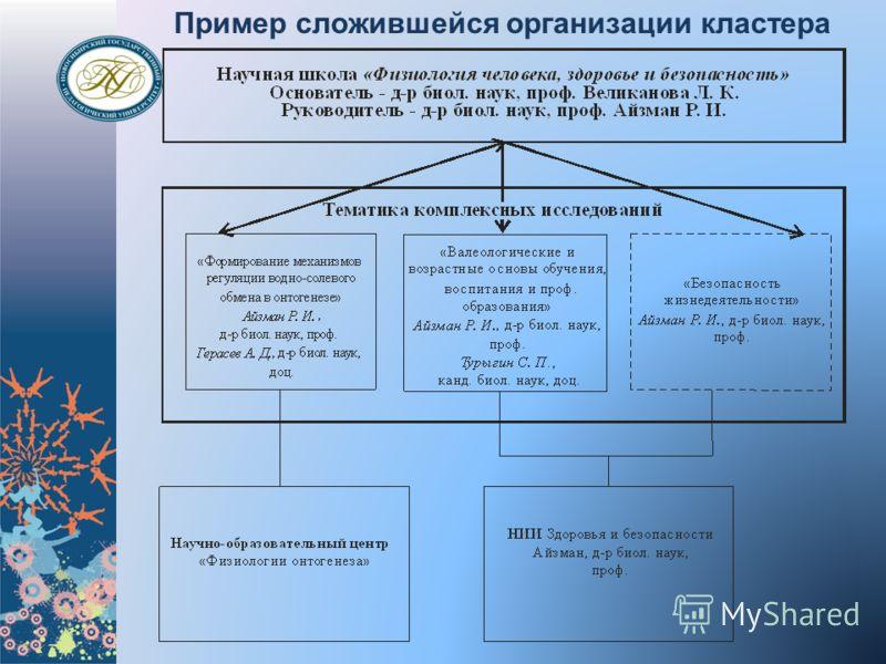 Пример сложившейся организации кластера