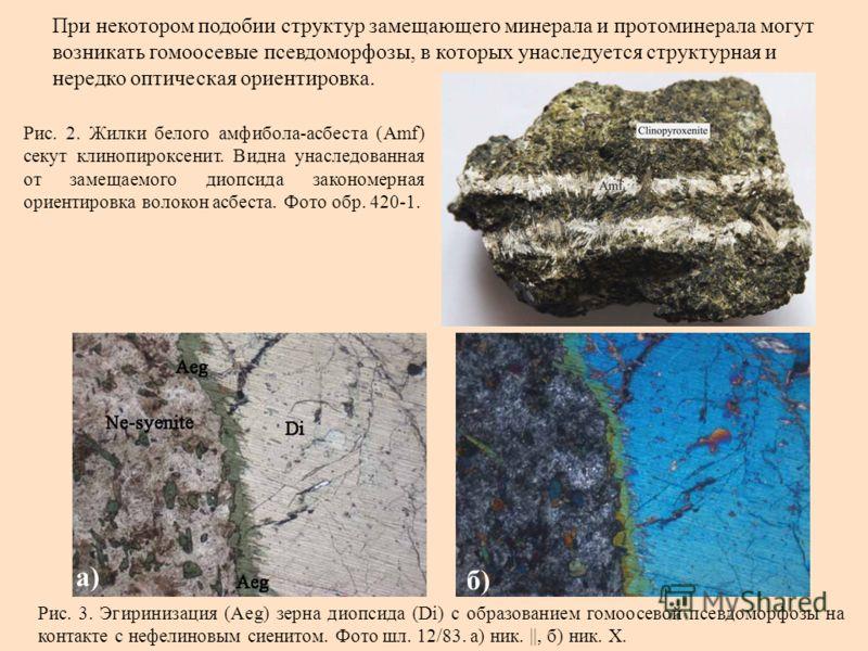 При некотором подобии структур замещающего минерала и протоминерала могут возникать гомоосевые псевдоморфозы, в которых унаследуется структурная и нередко оптическая ориентировка. Рис. 2. Жилки белого амфибола-асбеста (Amf) секут клинопироксенит. Вид