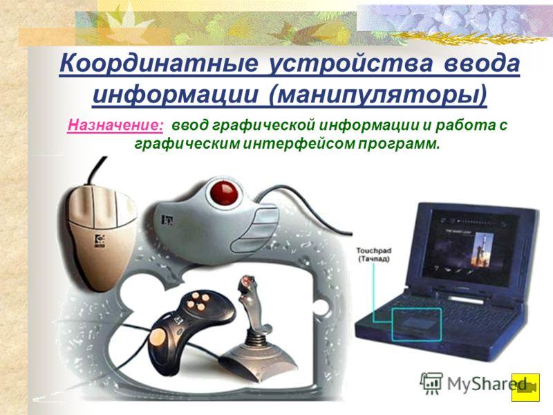 Координатные устройства ввода информации (манипуляторы) Назначение: ввод графической информации и работа с графическим интерфейсом программ.