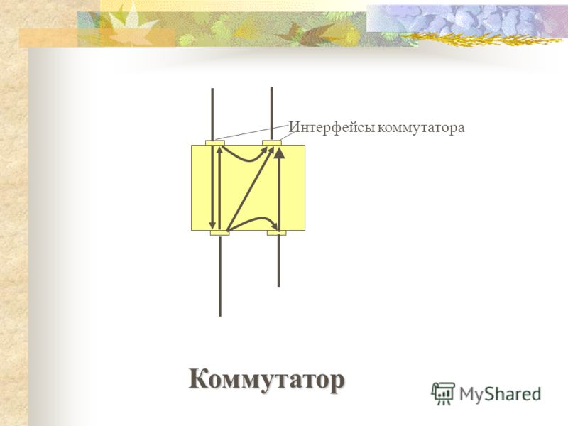 Интерфейсы коммутатора Коммутатор