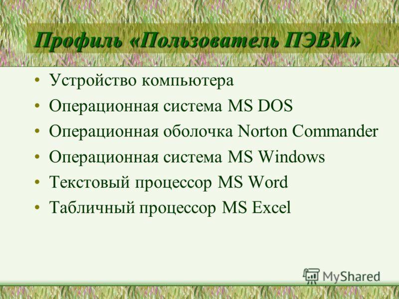 Профиль «Пользователь ПЭВМ» Устройство компьютера Операционная система MS DOS Операционная оболочка Norton Commander Операционная система MS Windows Текстовый процессор MS Word Табличный процессор MS Excel