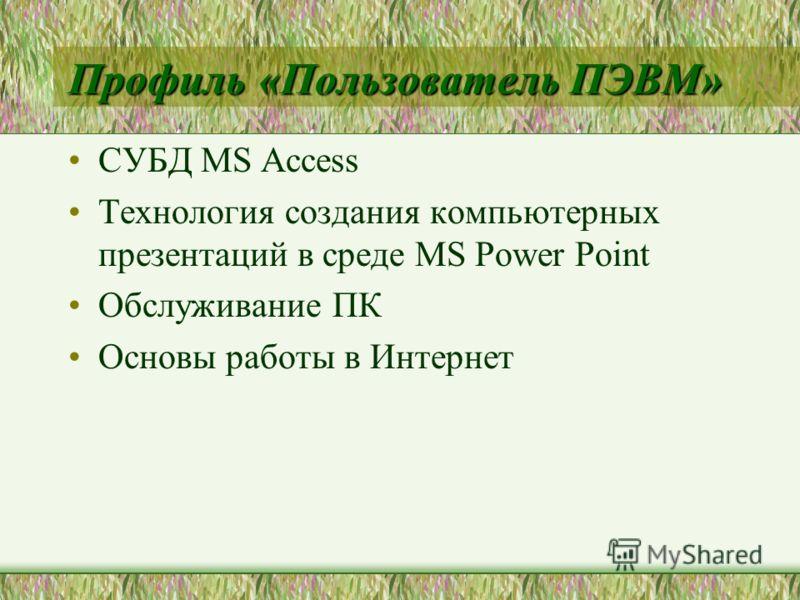 Профиль «Пользователь ПЭВМ» СУБД MS Access Технология создания компьютерных презентаций в среде MS Power Point Обслуживание ПК Основы работы в Интернет