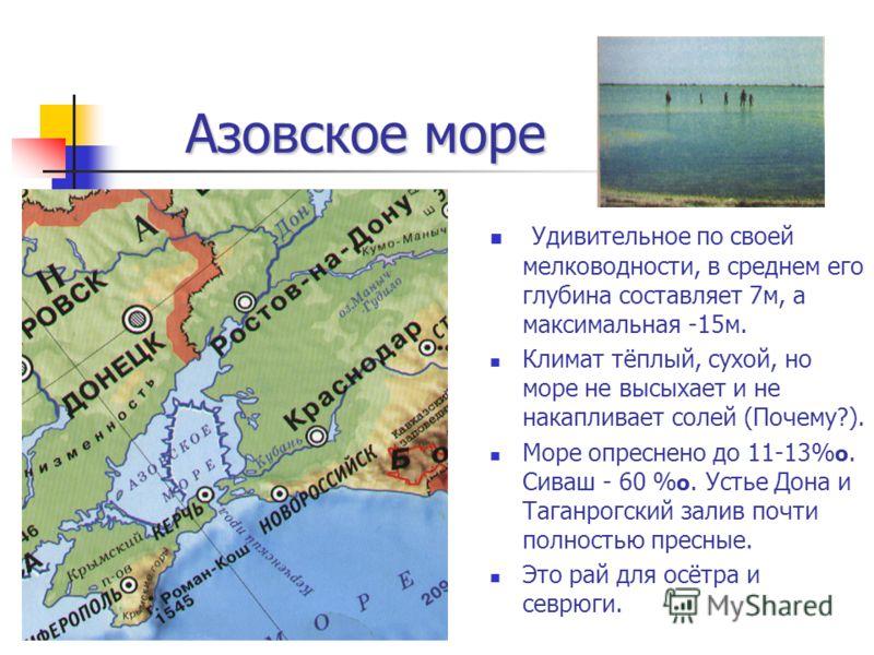 Азовское море Азовское море Удивительное по своей мелководности, в среднем его глубина составляет 7м, а максимальная -15м. Климат тёплый, сухой, но море не высыхает и не накапливает солей (Почему?). Море опреснено до 11-13% о. Сиваш - 60 % о. Устье Д