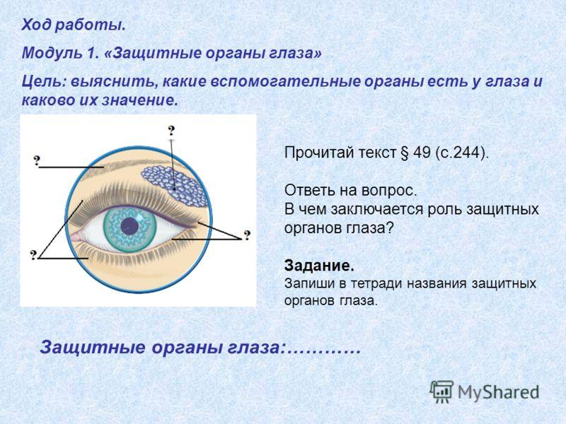 Ход работы. Модуль 1. «Защитные органы глаза» Цель: выяснить, какие вспомогательные органы есть у глаза и каково их значение. Прочитай текст § 49 (с.244). Ответь на вопрос. В чем заключается роль защитных органов глаза? Задание. Запиши в тетради назв