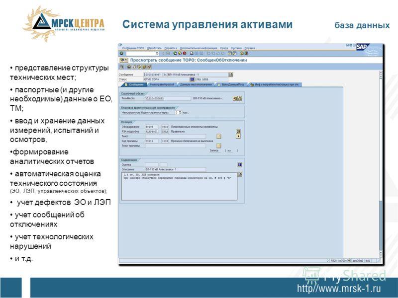 Система управления активами база данных представление структуры технических мест; паспортные (и другие необходимые) данные о ЕО, ТМ; ввод и хранение данных измерений, испытаний и осмотров, формирование аналитических отчетов автоматическая оценка техн