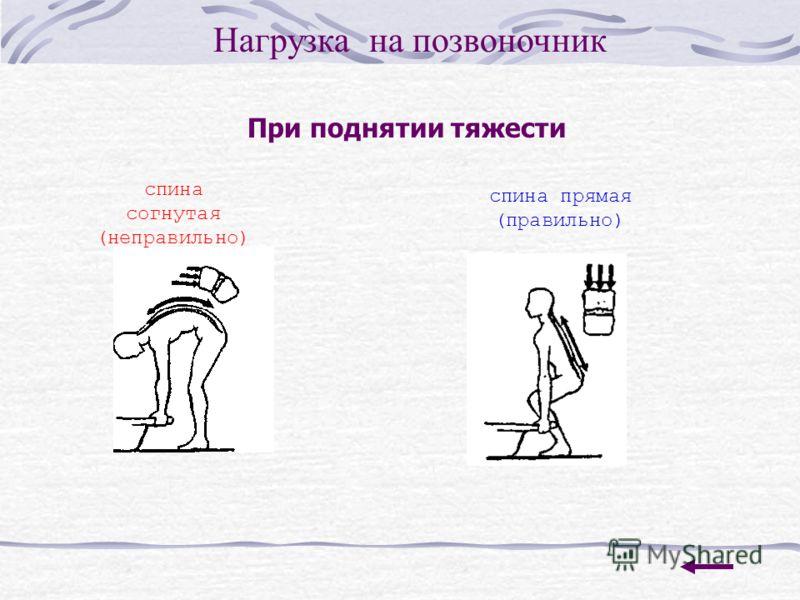 При поднятии тяжести Нагрузка на позвоночник спина согнутая (неправильно) спина прямая (правильно)
