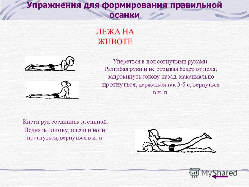 Упражнения для формирования правильной осанки ЛЕЖА НА ЖИВОТЕ Упереться в пол согнутыми руками. Разгибая руки и не отрывая бедер от пола, запрокинуть голову назад, максимально прогнуться, держаться так 3-5 с, вернуться в и. п. Кисти рук соединить за с