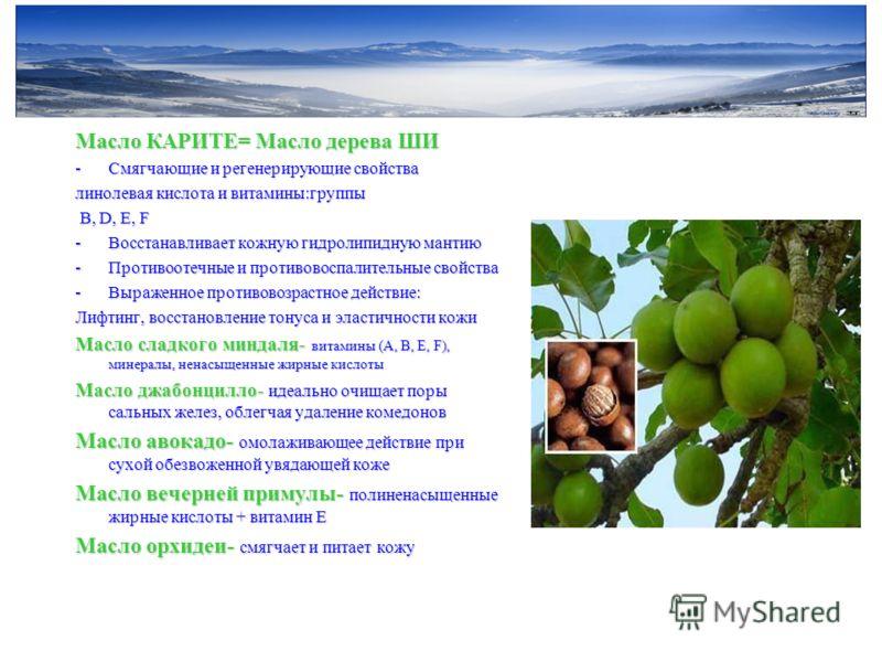Масло КАРИТЕ= Масло дерева ШИ -Смягчающие и регенерирующие свойства линолевая кислота и витамины:группы В, D, E, F В, D, E, F -Восстанавливает кожную гидролипидную мантию -Противоотечные и противовоспалительные свойства -Выраженное противовозрастное