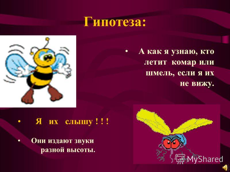 Гипотеза: А как я узнаю, кто летит комар или шмель, если я их не вижу. Я их слышу ! ! ! Они издают звуки разной высоты.