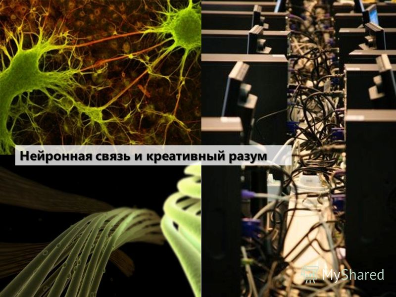Нейронная связь и креативный разум