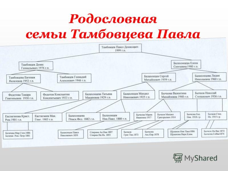 Родословная семьи Тамбовцева Павла