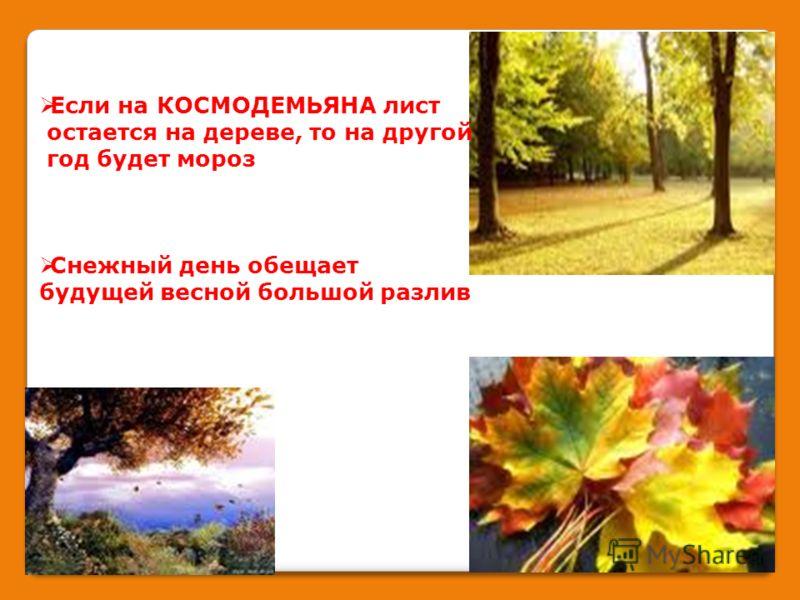Если на КОСМОДЕМЬЯНА лист остается на дереве, то на другой год будет мороз Снежный день обещает будущей весной большой разлив