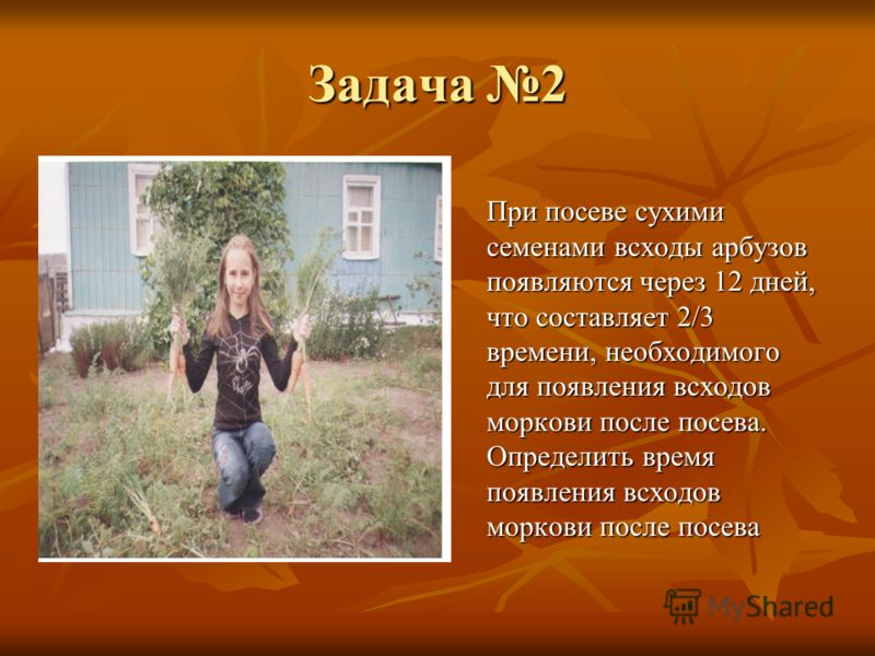 Задача 2 При посеве сухими семенами всходы арбузов появляются через 12 дней, что составляет 2/3 времени, необходимого для появления всходов моркови после посева. Определить время появления всходов моркови после посева