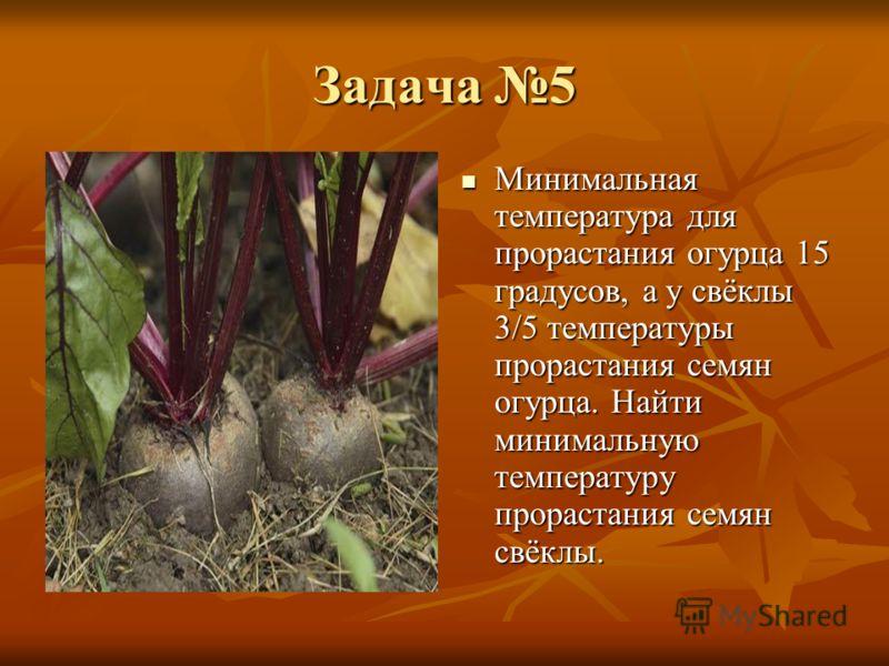 Задача 5 Минимальная температура для прорастания огурца 15 градусов, а у свёклы 3/5 температуры прорастания семян огурца. Найти минимальную температуру прорастания семян свёклы. Минимальная температура для прорастания огурца 15 градусов, а у свёклы 3