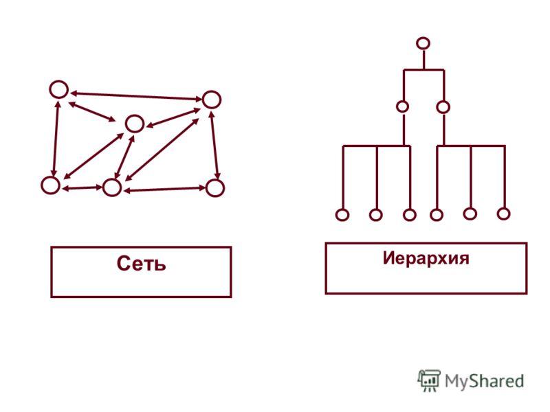 Иерархия Сеть