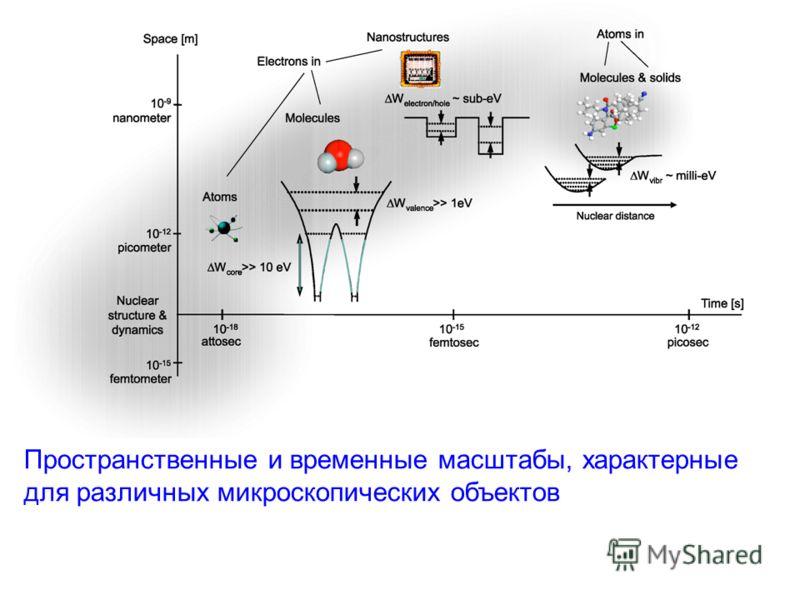 Пространственные и временные масштабы, характерные для различных микроскопических объектов