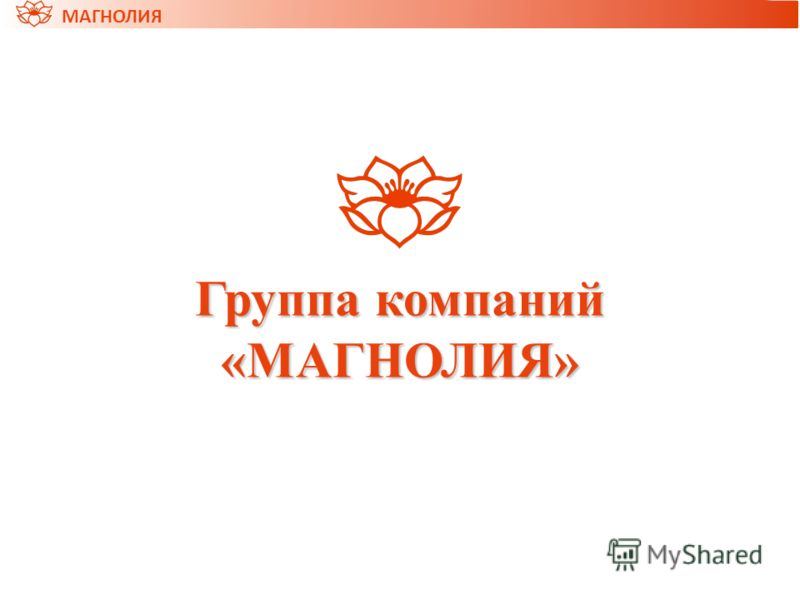 МАГНОЛИЯ Группа компаний «МАГНОЛИЯ»