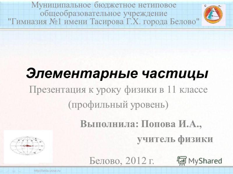 Элементарные частицы Муниципальное бюджетное нетиповое общеобразовательное учреждение