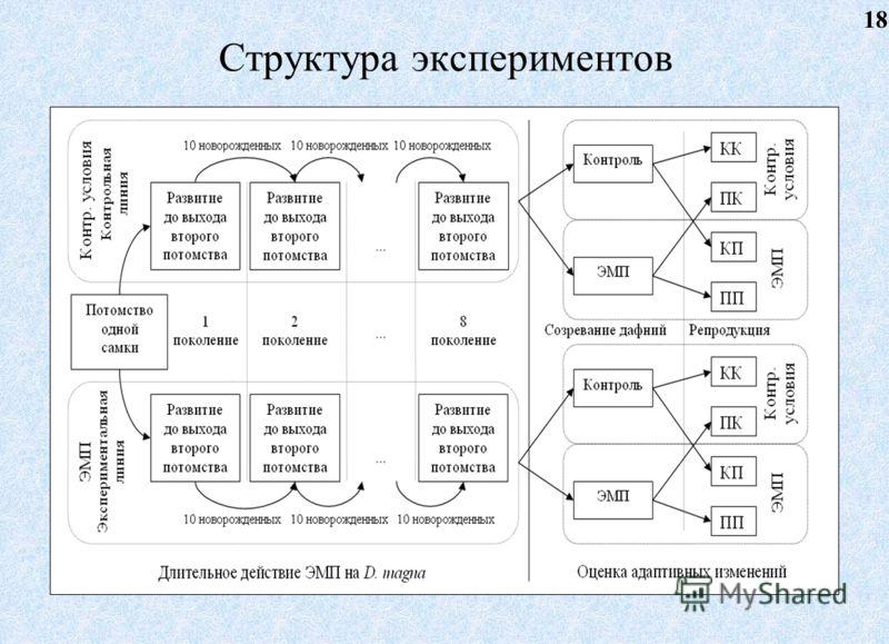 Структура экспериментов 18