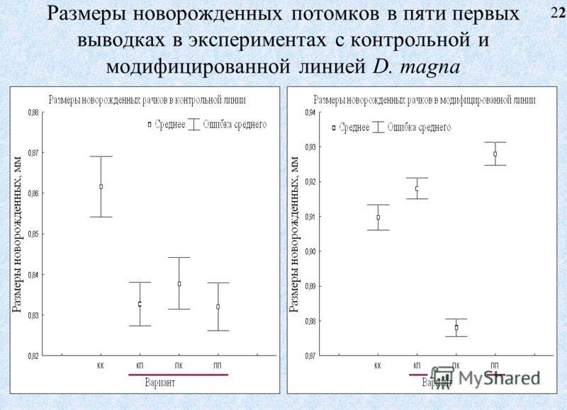 Размеры новорожденных потомков в пяти первых выводках в экспериментах с контрольной и модифицированной линией D. magna 22 22